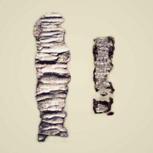 A Biblia legrégebbi szövegtöredéke